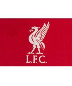Vlajka Liverpool 52cm x 91cm